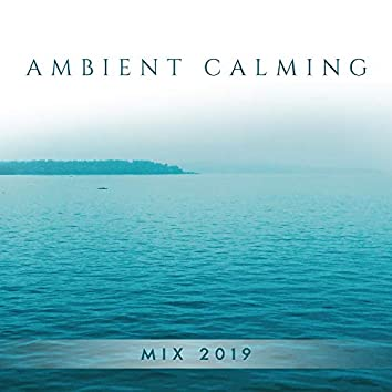 Ambient Calming Mix 2019: New Age Music Compilation Composed for Relaxation, Rest, Get Rid of Bad Thoughts, Fight with Stressful Situations