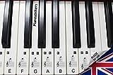 Set de pegatinas para teclado electrónico o piano con 88 teclas, ideal para aprender a tocar rápido,...