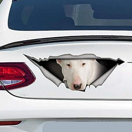 Bike Decals Bull Terrier Dog Vinyl Self Stick Decal Wall Vinyl Any Colour Decal Stickers Bumper Sticker Laptop Decal Car Sticker