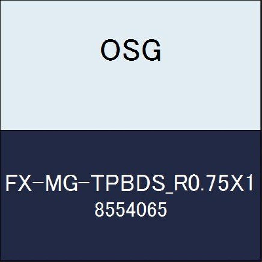 相続人デコラティブコンパニオンOSG エンドミル FX-MG-TPBDS_R0.75X1 商品番号 8554065