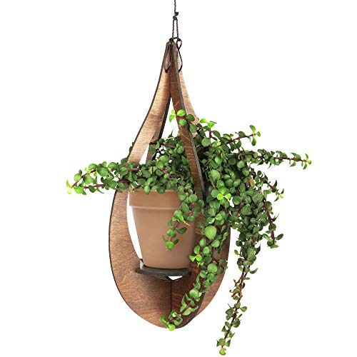 Best wall mounted plant hanger