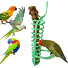 Bird Foraging Toy Parrot Fruit Vegetable Holder Hanging Seed Feeder for Budgie Parakeet Cockatiel Conure African Grey Cockatoo Macaw Amazon Lovebird Finch Canary Rat Chinchilla Guinea Pig Cage Food Basket Tool