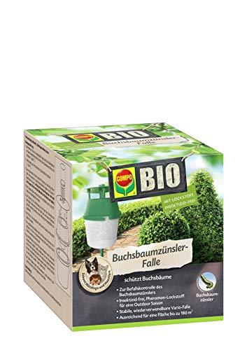 COMPO Buchsbaumzünsler-Falle, Inkl. 3 Lockstoff-Dispenser, Insektizid-frei