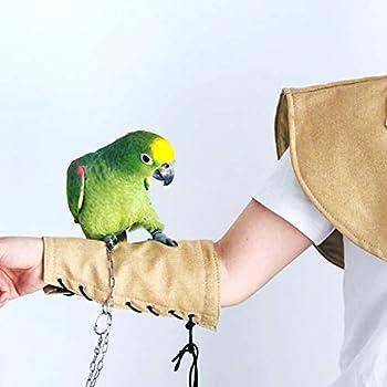 Goneryisour Couches en denim pour oiseaux et perroquets - Protection de bras multifonction - Anti-rayures