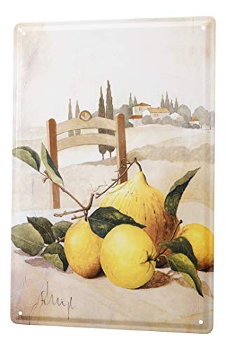 LEotiE SINCE 2004 Blechschild Abenteurer Wand Deko Gemälde Ernte Toskana Metallschild 20x30 cm Metallschilder Nostalgie Küche