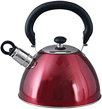 Mr. Coffee Morbern 1.8 Quart Stainless Steel Whistling Tea Kettle