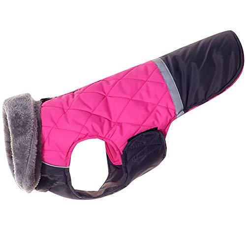 JoyDaog - Cappotti reversibili per cani di taglia extra grande, impermeabile, per cagnolini freddi, taglia XL, colore: rosa scuro