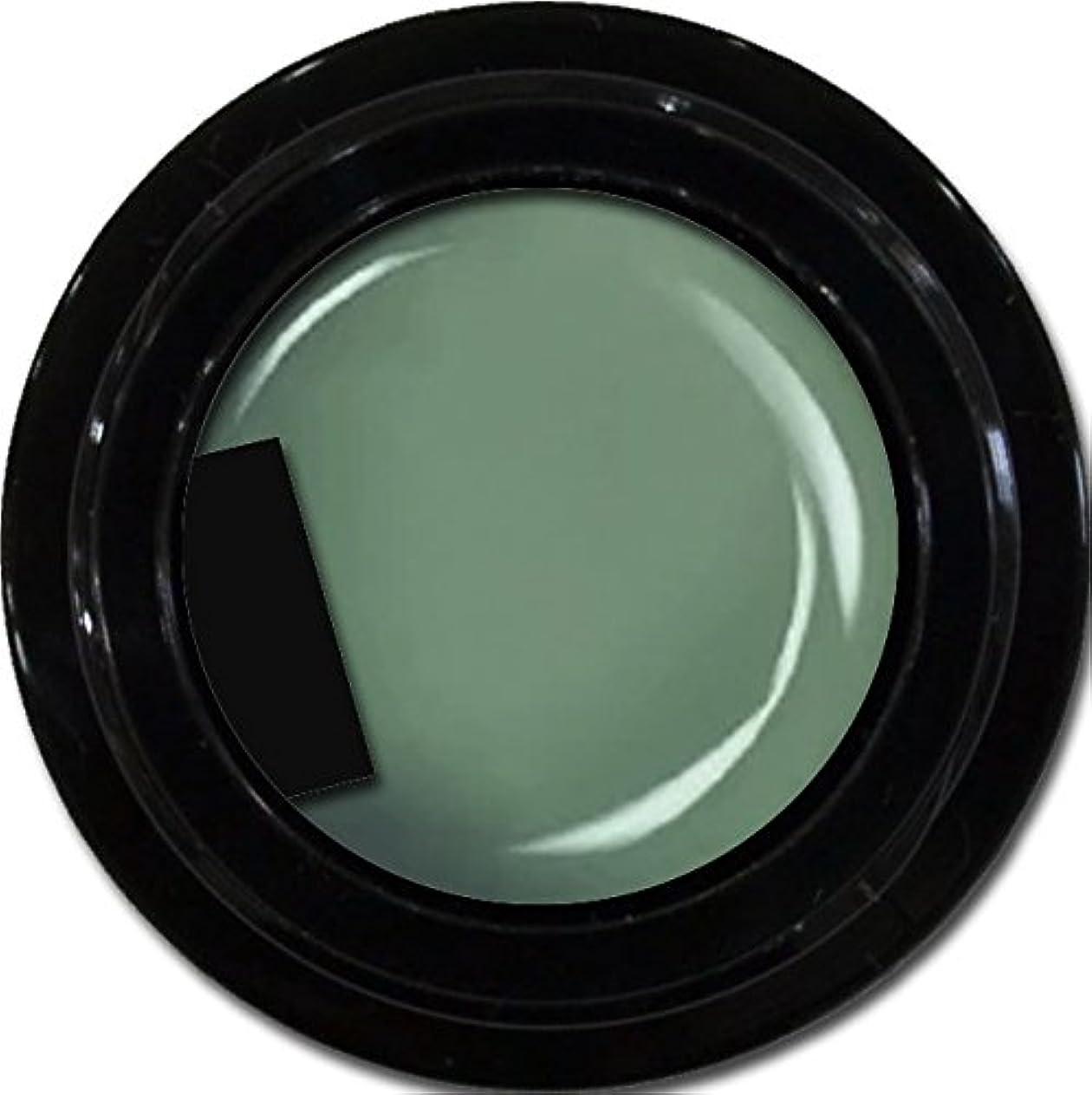 講師悪化するナンセンスカラージェル enchant color gel M714 Army 3g/ マットカラージェル M714 アーミー 3グラム