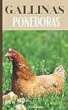 Gallinas Ponedoras: Todo lo que se necesita para criar una gallina ponedora al aire libre:...