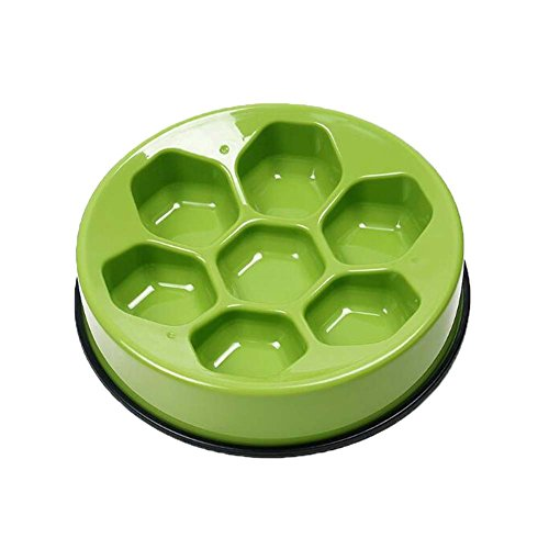 Bol en bois en forme de chien Round Pet Bowl Food Slow Feed Bowl pour chiens Cats 9.4 \