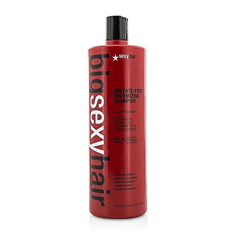 ええ扇動運動セクシーヘアコンセプト Big Sexy Hair Sulfate-Free Volumizing Shampoo 1000ml/33.8oz並行輸入品