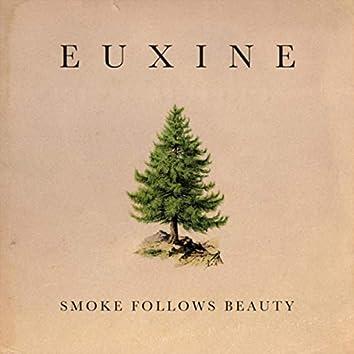 Smoke Follows Beauty