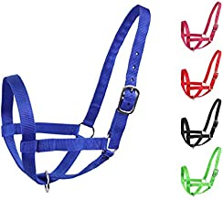 Derby Nylon Cattle Halters Barn and Turnout in Calf, Cow, Heifer, Steer, Newborn Sizes