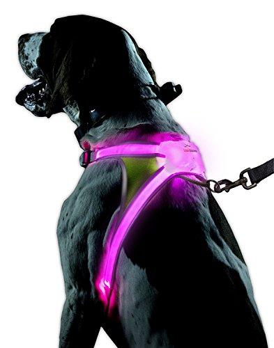 noxgear LightHound