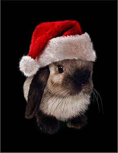 【FOX REPUBLIC】【サンタの帽子をかぶったドワーフロップ うさぎ】 黒マット紙(フレーム無し)A3サイズ