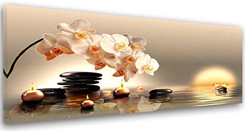 Feeby. Leinwandbild, Bilder, Wand Bild, Wandbilder, Kunstdruck 100x40 cm, Orchidee, Zen, BEIGE