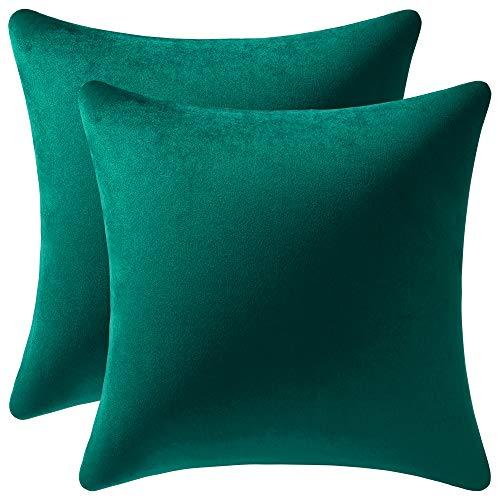 DEZENE 50x50cm Grüne Kissenbezüge: 2er Pack Rechteckige Dekorative Kissenbezüge aus Weichem Samt für Bauerncouch Sofa