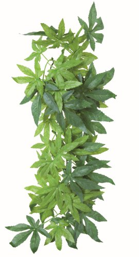 Trixie 76236 Seiden-Hängepflanze, Abutilon ø 20 × 30 cm
