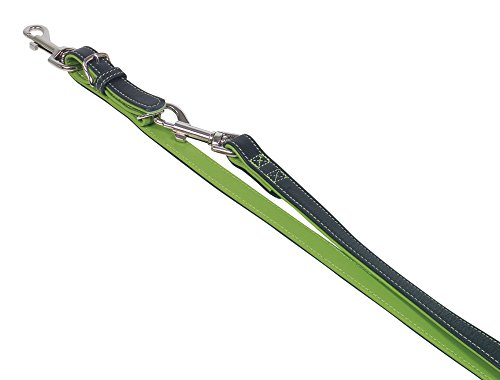 Nobby Laisse Pacific, 2 m/18 mm, vert