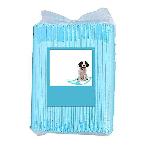 QLSN Almohadillas Mascotas Pañales Pads Alfombrilla Entrenamiento Mascotas Almohadilla De Orina Desodorante Espeso Absorción De Agua Sin Fugas Seco Y Transpirable Una Vez XL