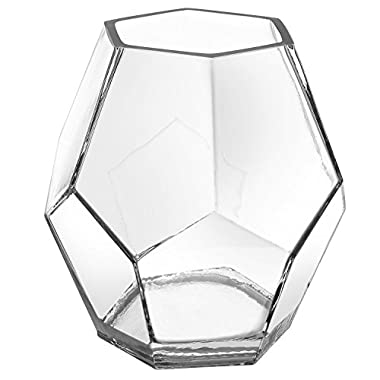 5 Inch Clear Glass Hexagon Shape Flower Vase, Tabletop Prism Wedding Party Decor