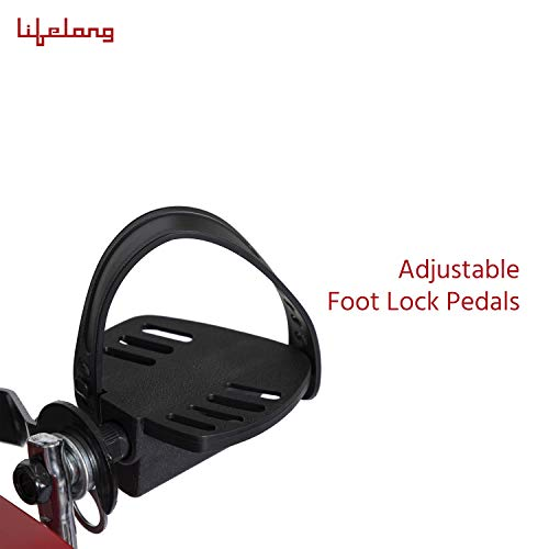 Lifelong LLFCN18 Fit Pro Plus Airbike Exercise Machine with Moving Handles & Back Support for Cardio Training, Weight Loss and Workout at Home