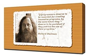 Richard Stallman Quotes 2 - Canvas Art Print