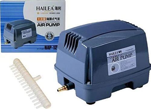HAP-120 Muy leiser compresor de diafragma Hailea