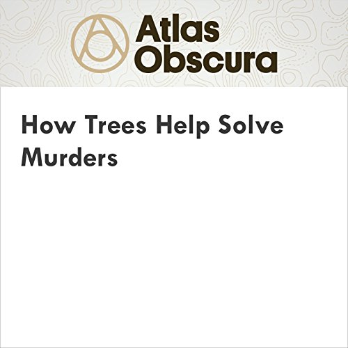 How Trees Help Solve Murders audiobook cover art