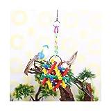 Juguetes Accesorios Cockatiel Parrot Toys Lory Bite Toys Toys Colorido Barra de madera Pájaro Juguetes Juguetes Juguetores Colgando Ornamento Material de aves PET para Agapornis ( Color : H )