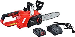 Best small battery powered chainsaw