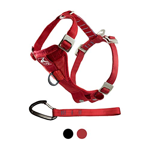 Kurgo Dog Harness | Car Harness for Dogs | Medium | RedPet Safety Seat Belt | Certified Crash Tested Harness | Car Seatbelt | Tru-Fit Enhanced Strength Style