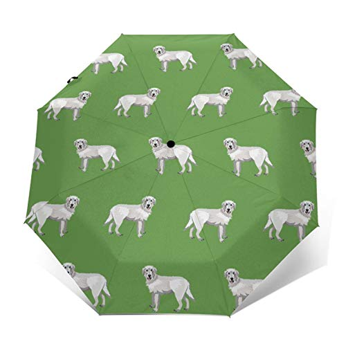 Maremma - Paraguas plegable para perro pastor italiano, color blanco, con apertura y cierre automático, color verde