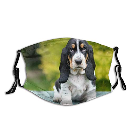 Crate Train A Basset Hound Puppy Dog Print Cloth Face Mask Colorful for Men Women Fashion Sport for Work School Sun Uv Protection Balaclava Face Mask Mouth Protection with 2 Filters