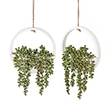 Floweroyal 2pcs Artificial Succulents Hanging Plants 12.2'' Fake String of Pearls in Pot with 8.3'' Lanyard for Indoor Outdoor Wall Decor.