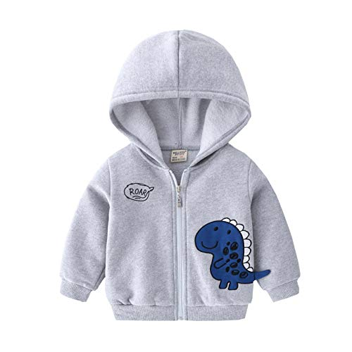 Toddler Boys Spring Fall Clothes Cartoon Dinosaur Letter Printed Hoodie Jacket Kids Cool Zipper Casual Sport Outerwear Coat Sweatershirt with Long Sleeve(1-6T) (Gray, 90, 1-2 Years)