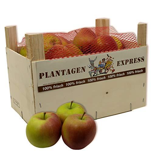 Äpfel - Apfelkiste - Braeburn 4kg - Plantagen Express