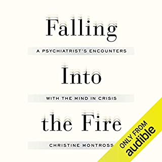 Falling into the Fire audiobook cover art