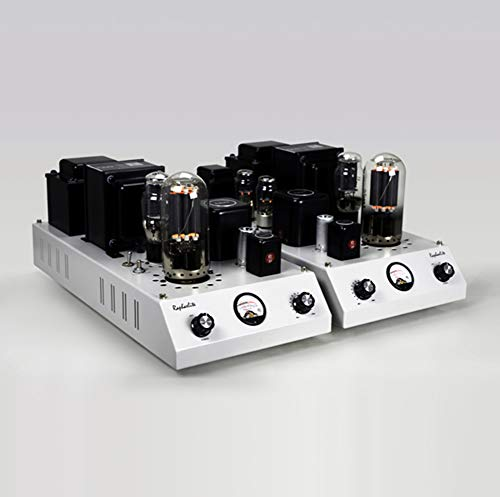 Raphaelite CSM45 Single-Ended monoblock Power Amplifier 845 HI-FI Audio Tube amp Pair with Cover