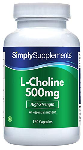 Choline Bitartrate Capsules | Super Strength 500mg Formula Supplement | 120 Capsules = 2 Month Supply | Vegan & Vegetarian Safe