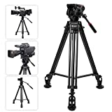 Professional Dslr Cameras Review and Comparison