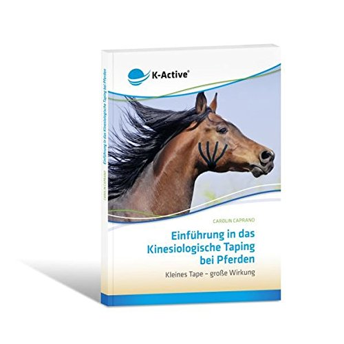 Einführung in das Kinesiologische Taping bei Pferden: Kleines Tape - große Wirkung