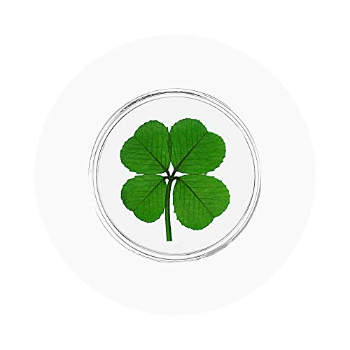 Clovers Online Genuine Four Leaf Clover Good Luck Charm Pocket Token