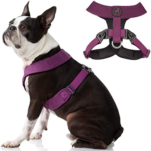 Gooby Dog Harness - Purple, X-Large - Comfort X Harness Dual Snap Rotational Buckles with Patented Choke-Free X Frame - Perfect on The Go No Pull Harness for Small Dogs for Indoor and Outdoor Use