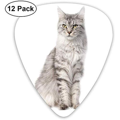 12 Pack Gato blanco y negro PNG sin hebilla Selecciones de guitarra Juego de regalo completo para guitarrista