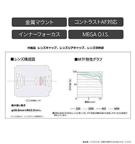 パナソニック単焦点マクロレンズマイクロフォーサーズ用ルミックスGMACRO30mm/F2.8ASPH./MEGAO.I.S.H-HS030