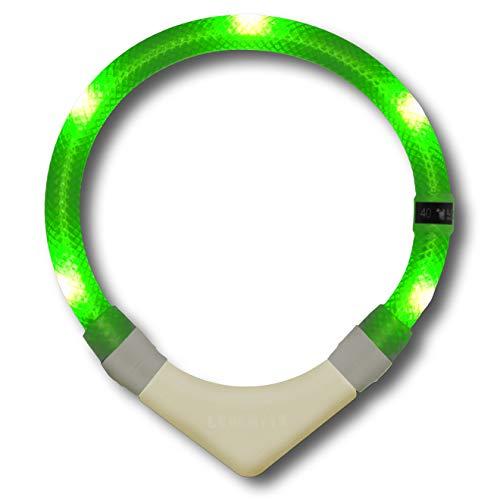 LEUCHTIE® Leuchthalsband Premium NL neongrün Größe 35 I nachleuchtend phosphoreszierendes Batterieteil I LED Halsband für Hunde I konstante Leuchtkraft I wasserdicht I extrem hell
