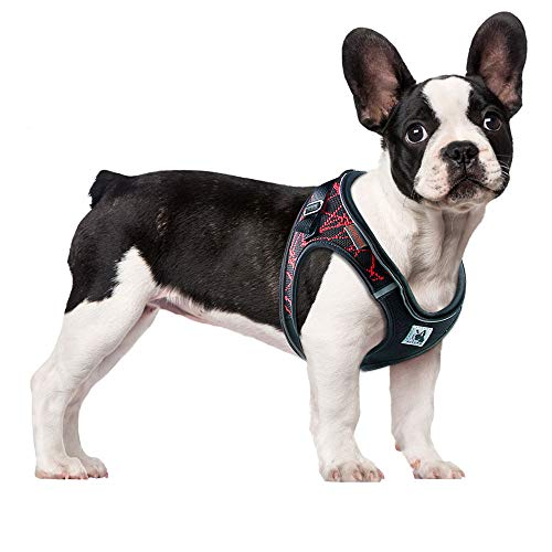 ACKERPET Comfort Step in Dog Harness Easy to Put on Small Dog Harness No Choke Adjustable Pet Vest No Pull Outdoor Sport Vest Harness Reflective Soft Padded Vest for Small Medium Dogs(S, Red)