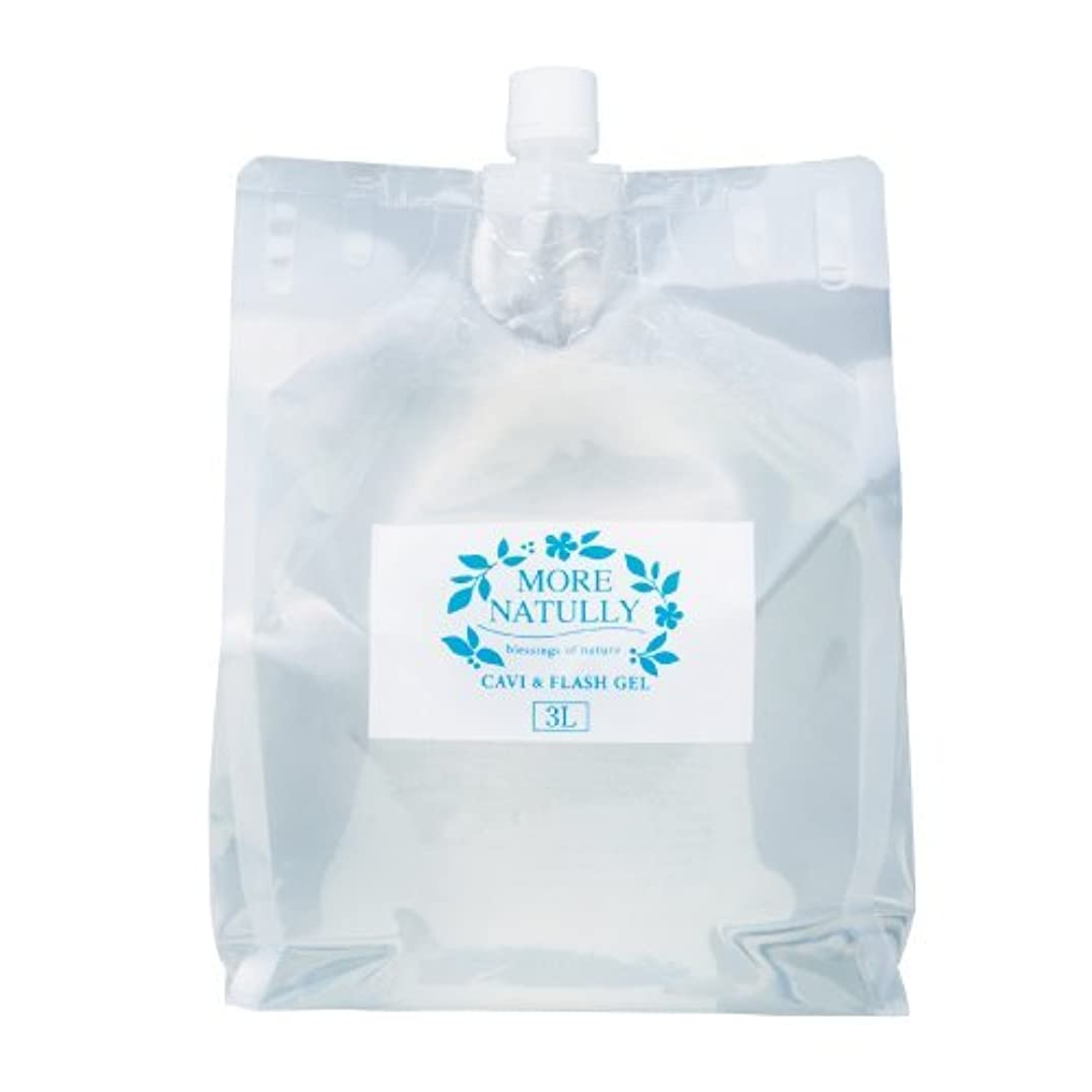 溶融冷凍庫ヘッドレスモアナチュリー キャビ&フラッシュジェル 【ソフト】3kg