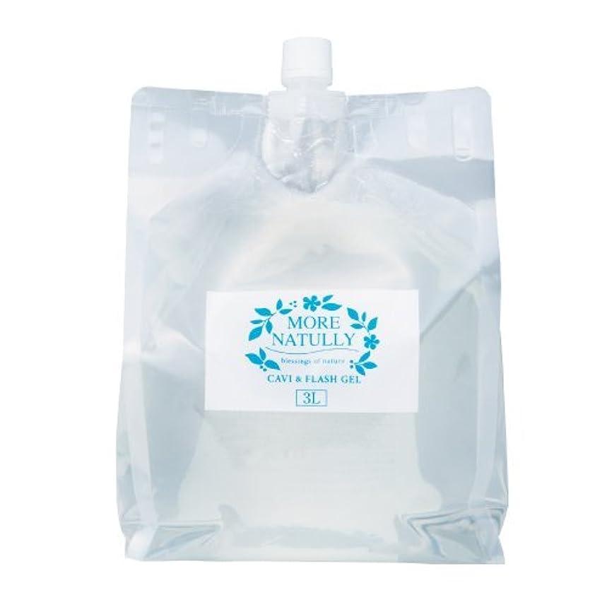 腐食する割合包帯モアナチュリー キャビ&フラッシュジェル 【スーパーハード】3kg